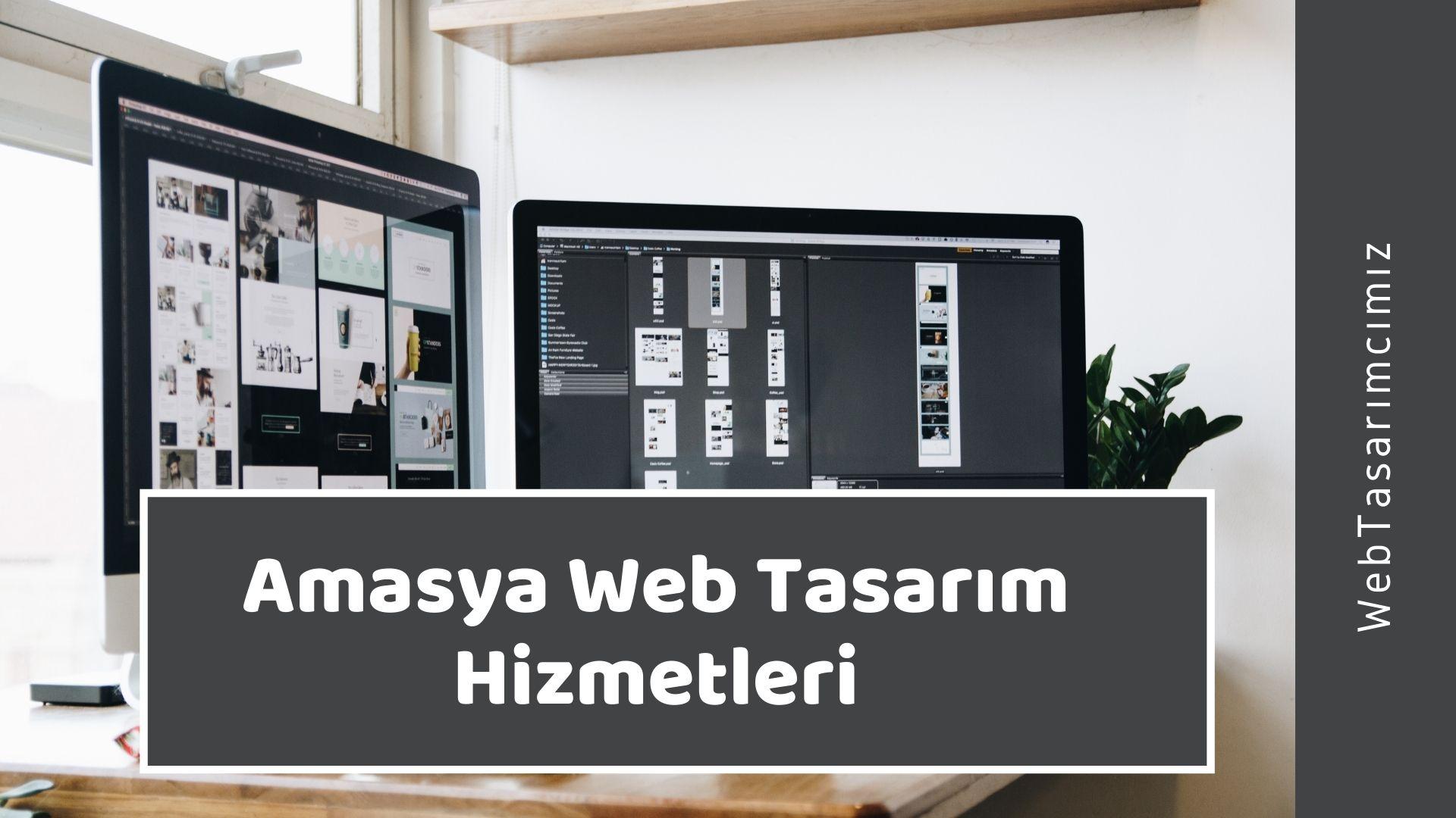Amasya Web Tasarım Hizmetleri